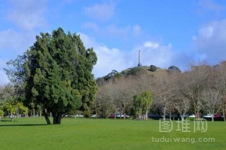新西兰奥克兰的康沃尔公园和一座树山景观