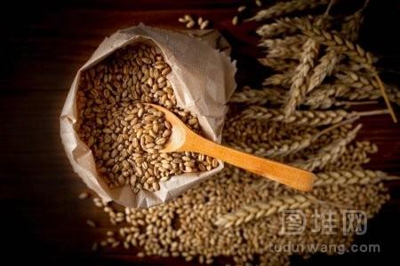 成熟的麦子在袋子