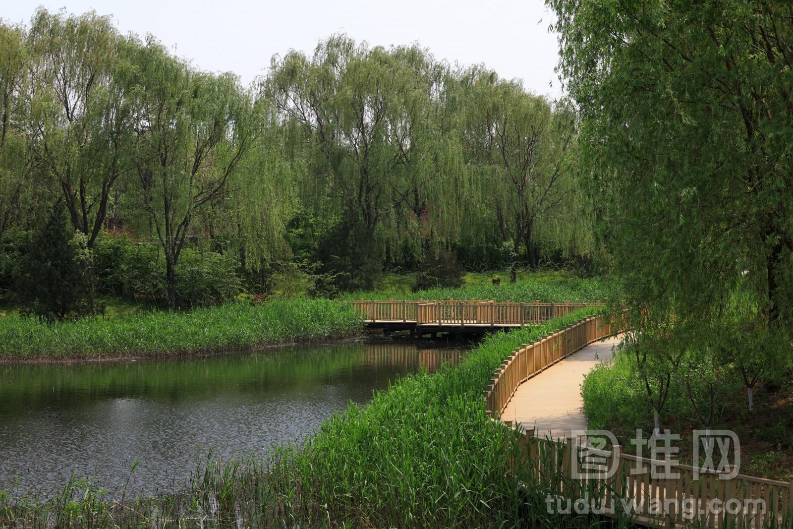 河北唐山植物园栈桥